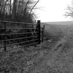 Crop of Farm Gate photo by Terry McNeil
