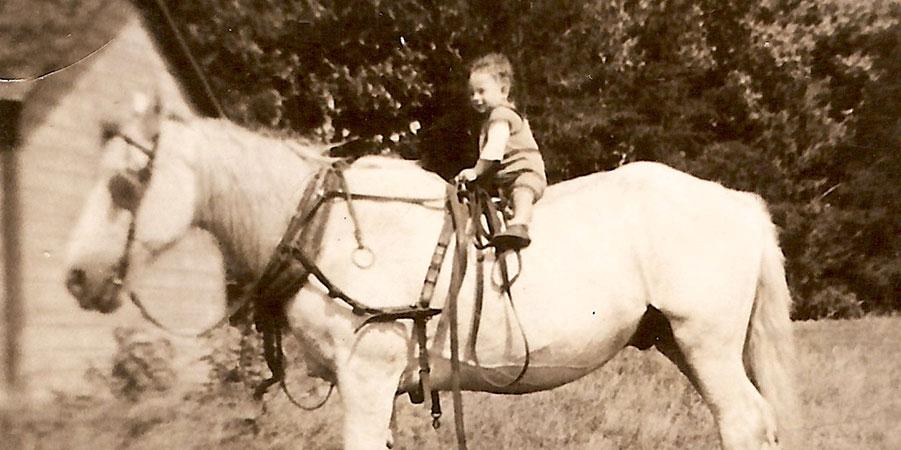 skip on a horse