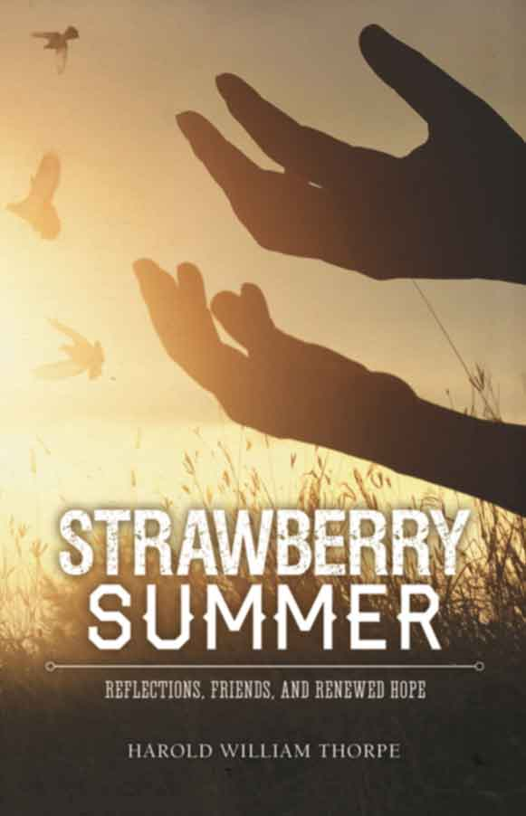 Strawberry Summer cover