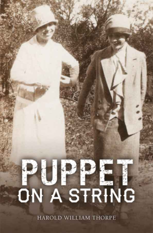 Puppet on a String cover